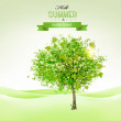 Summer background with a green tree. Vector. — Stock Vector #54010619