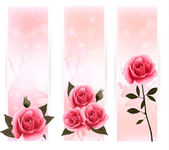 Three banners with pink roses. Vector. — Stock Vector