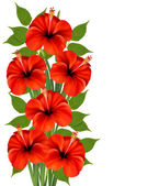 Background with a bunch of red flowers. Vector. — Stock Vector