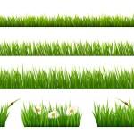 Big collection of green grass. Vector. — Stock Vector #70452071