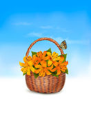 Summer background. Basket full of flowers and a butterfly. Vecto — Stock Vector