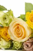 Bouquet of pretty pastel colored roses — Stock Photo