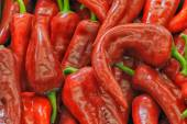 Red chili peppers as background — Stockfoto