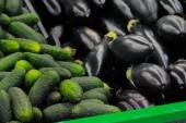 Komkommers en aubergines — Stockfoto