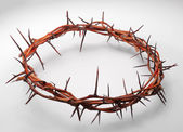 View of branches of thorns woven into a crown depicting the cruc — Stock Photo