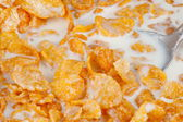 Cereal Flakes — Stock Photo