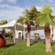 White tent in the lawn under the palm trees and red big pot — Stock Photo #66103429