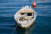 Old wooden boat with oars. — Stock Photo