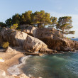 Coast of Croatia. Rocks, boats and pine trees. — Stock Photo #68818967