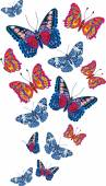 Card with beautiful bright butterflies — Stock vektor