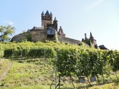 Vineyards under Cochem Imperial castle, Moselle — Stock Photo