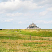 View with sheep and mont saint-michel abbey — Stock Photo
