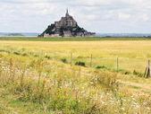 Rural landscape with mont saint-michel abbey — Stock Photo