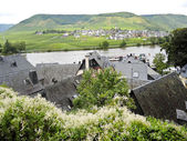 Villages on Moselle river, Germany — Stock Photo