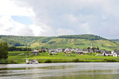 Ellenz Poltersdorf village on Moselle riverbank — Stock Photo