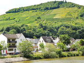 Houses in Ellenz Poltersdorf village on Moselle — Stock Photo