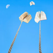 Two books tied on ropes soars into blue sky — Stock Photo