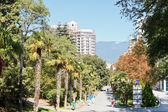 People on Palm alley in Primorskiy Park in Yalta — Stock Photo