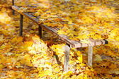Many yellow maple leaves on garden bench — Stock Photo