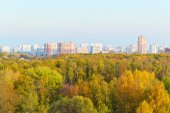 View of autumn trees and city — Stock Photo