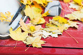 Fallen yellow maple leaves on red car hood — Stock Photo