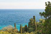 View of Black Sea from Alupka, Crimea — Stock Photo