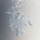 Snowflake closeup on window pane — Stock Photo
