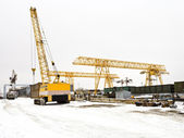 Landscape with different cranes in storage area — Stock Photo
