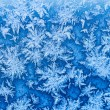 Snowflakes and frost on window in winter close up — Stock Photo #61291633