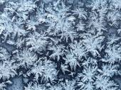 Snowflakes and frost on window pane close up — Stock Photo
