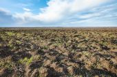 Plowed agricultural fileld in early spring — Stock Photo