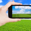 Photo of green country field under blue sky — Stock Photo #66841381
