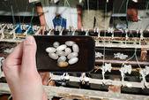 Tourist taking photo of extracting raw silk fibre — Stock Photo