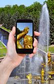 Tourist taking photo of Samson Fountain — Stock Photo