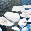 Melting ice floes in river in spring — Stock Photo #67378097