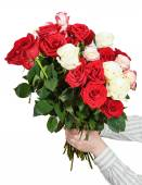Two hands giving bunch of many roses isolated — Stock Photo