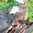 Firewood burning in old brazier — Stock Photo #75433465