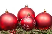 Red Christmas baubles on green spruce tree branch — Stock Photo