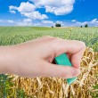 Hand deletes green wheat field by rubber eraser — Stock Photo #79414572
