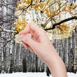 Hand deletes winter forest by rubber eraser — Stock Photo #79414816