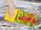 Hand deletes melting snow by yellow cloth — Stock Photo