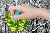 Hand deletes winter woods by rubber eraser — Stock Photo