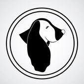 Pets design — 图库矢量图片