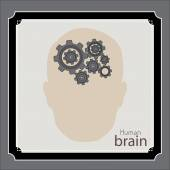 Brain design  — Stock Vector