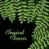 Tropical leaves design — Stock Vector