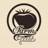 Diseño de alimentos orgánicos — Vector de stock