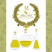 橄榄油设计 — 图库矢量图片