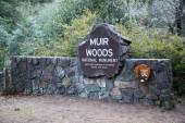 Muir Woods National Park Service Sign — Stock Photo