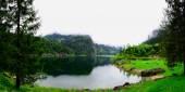 Lake and trees panorama — Stock Photo