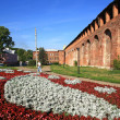 Постер, плакат: Russia Wall in Smolensk